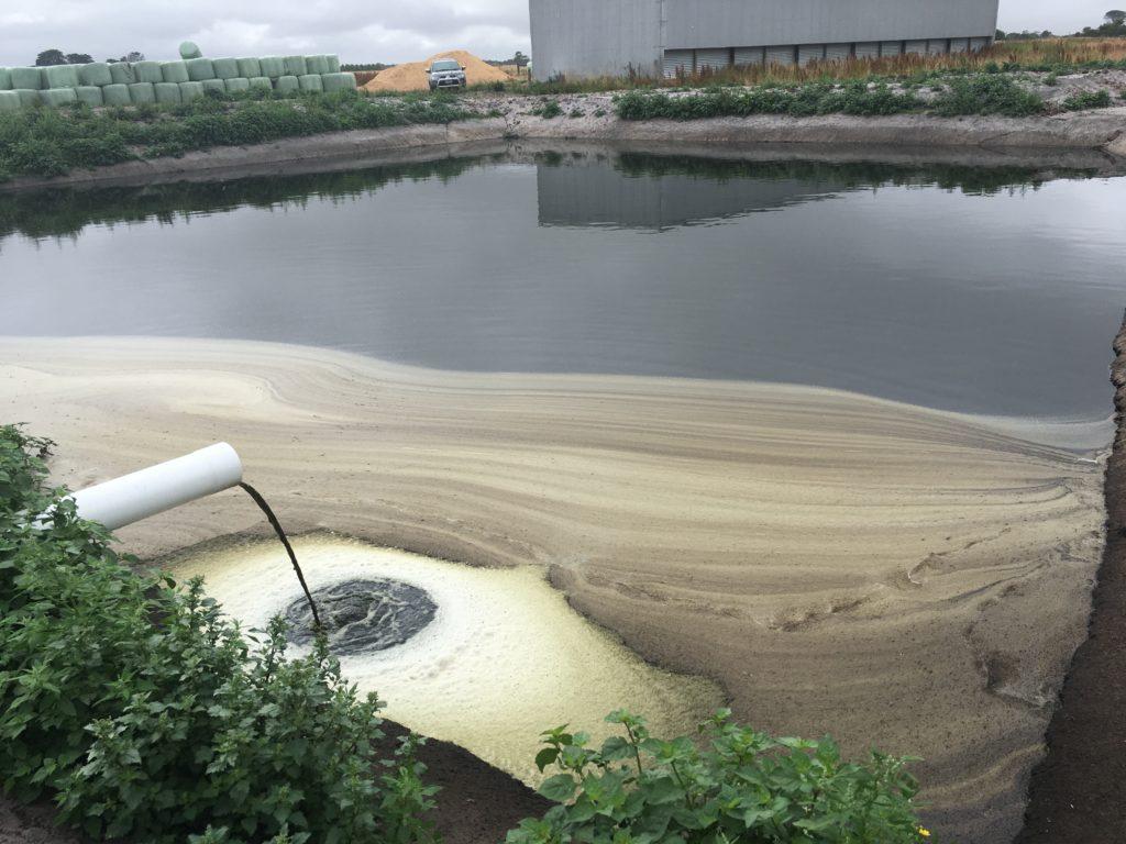 Farm 3 - Effluent Irrigation Pond - After