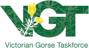 VGT-logo